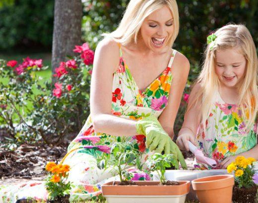 Precautions When Gardening Prevent Skin Problems